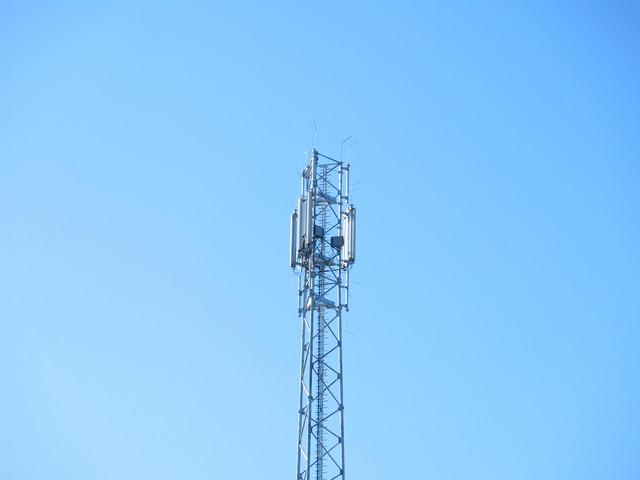 IMG-2349