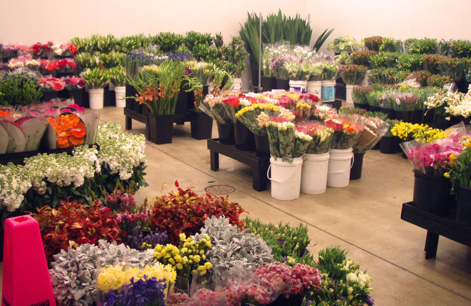 wholesale flowers uk