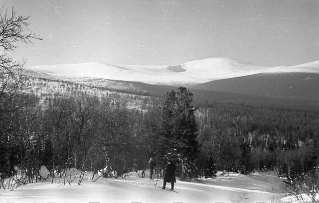 Dyatlov pass 1959 search 55