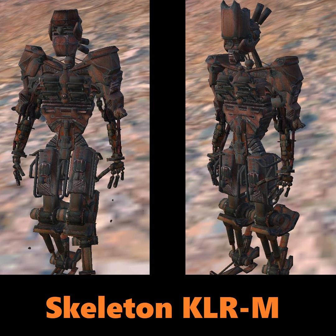 Skeleton KLR-M / Скелет KLR-M
