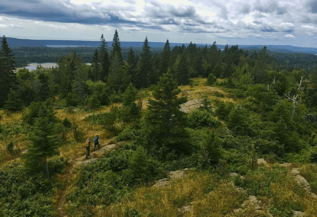Hiking Hype