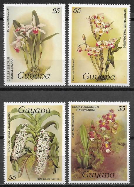 O Guyana 1414