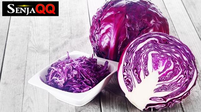7 Alasan Kol Ungu Masuk dalam Daftar Sayur Paling Menyehatkan