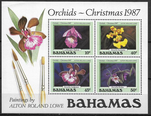 O Bahamas B52