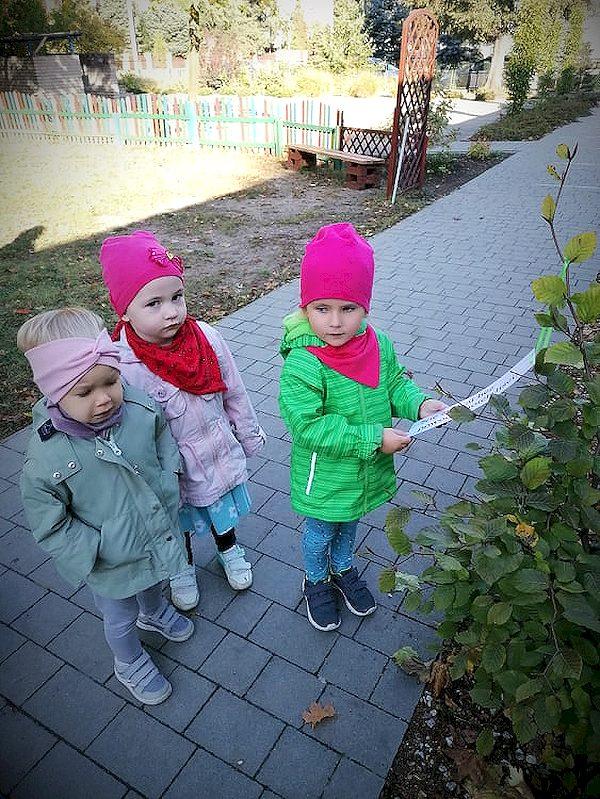 Ekolog-i-s-wie-to-drzewa-213.jpg
