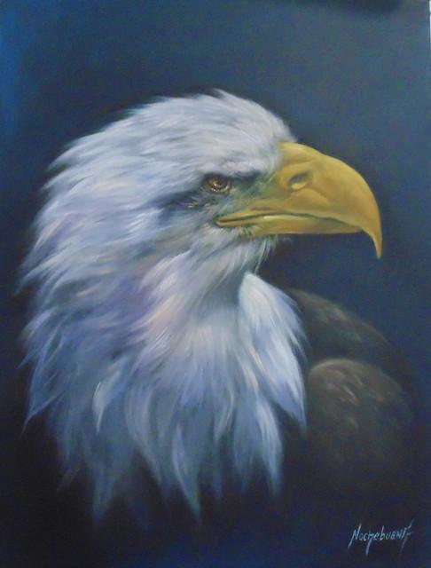 1-Aguila-Americana-Tecnica-Mixta