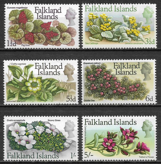 O Falkland 162