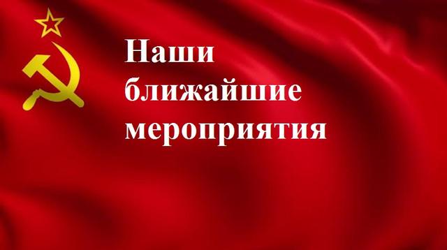 https//i.ibb.co/pj7v8tx/image.jpg