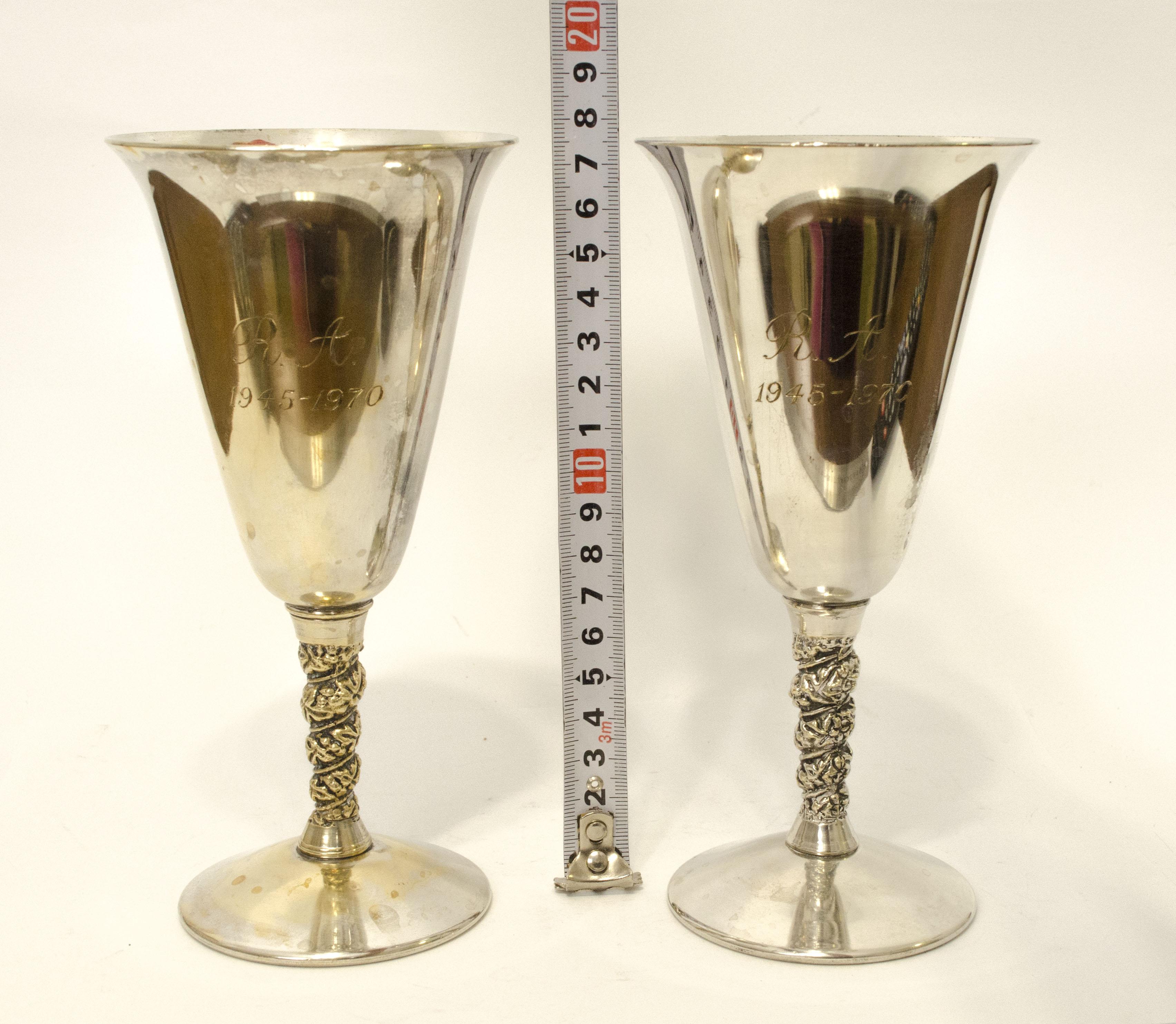 Два посеребренных бокала