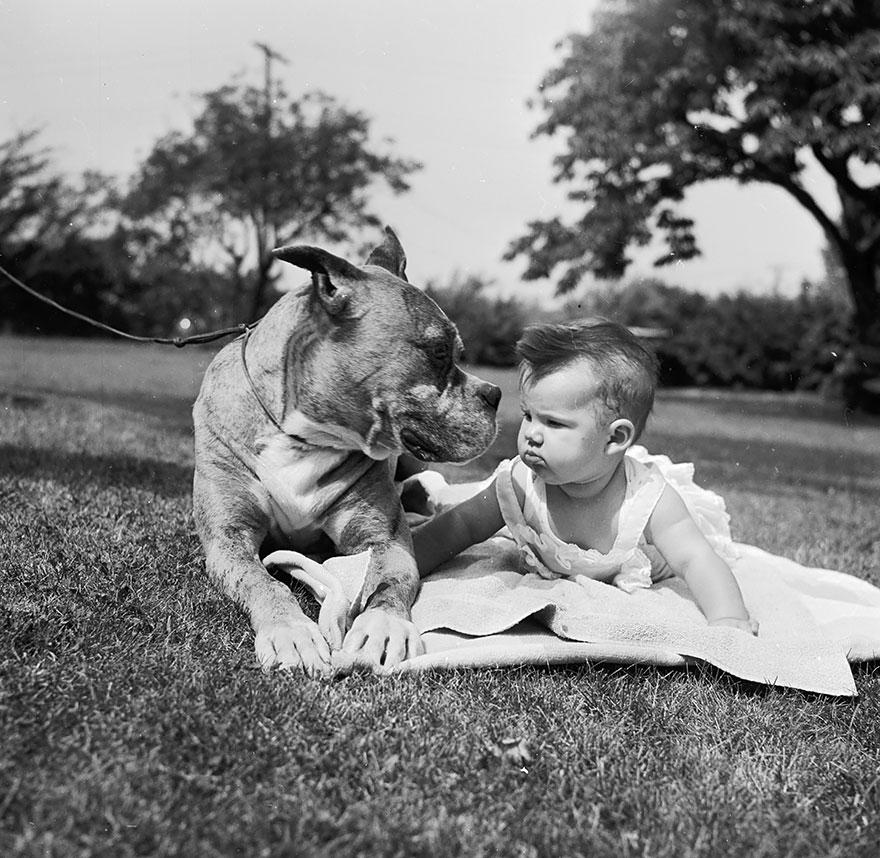 Когда собаки большие, а дети маленькие - 44 потрясающие фотографии - 21