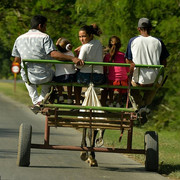 22160040-7785767-Cubans-ride-a-horse-carriage-in-Granma-province-on-November-15-2-a-35-1576170216485