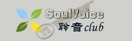 Browse to the homepage of Soulvoice
