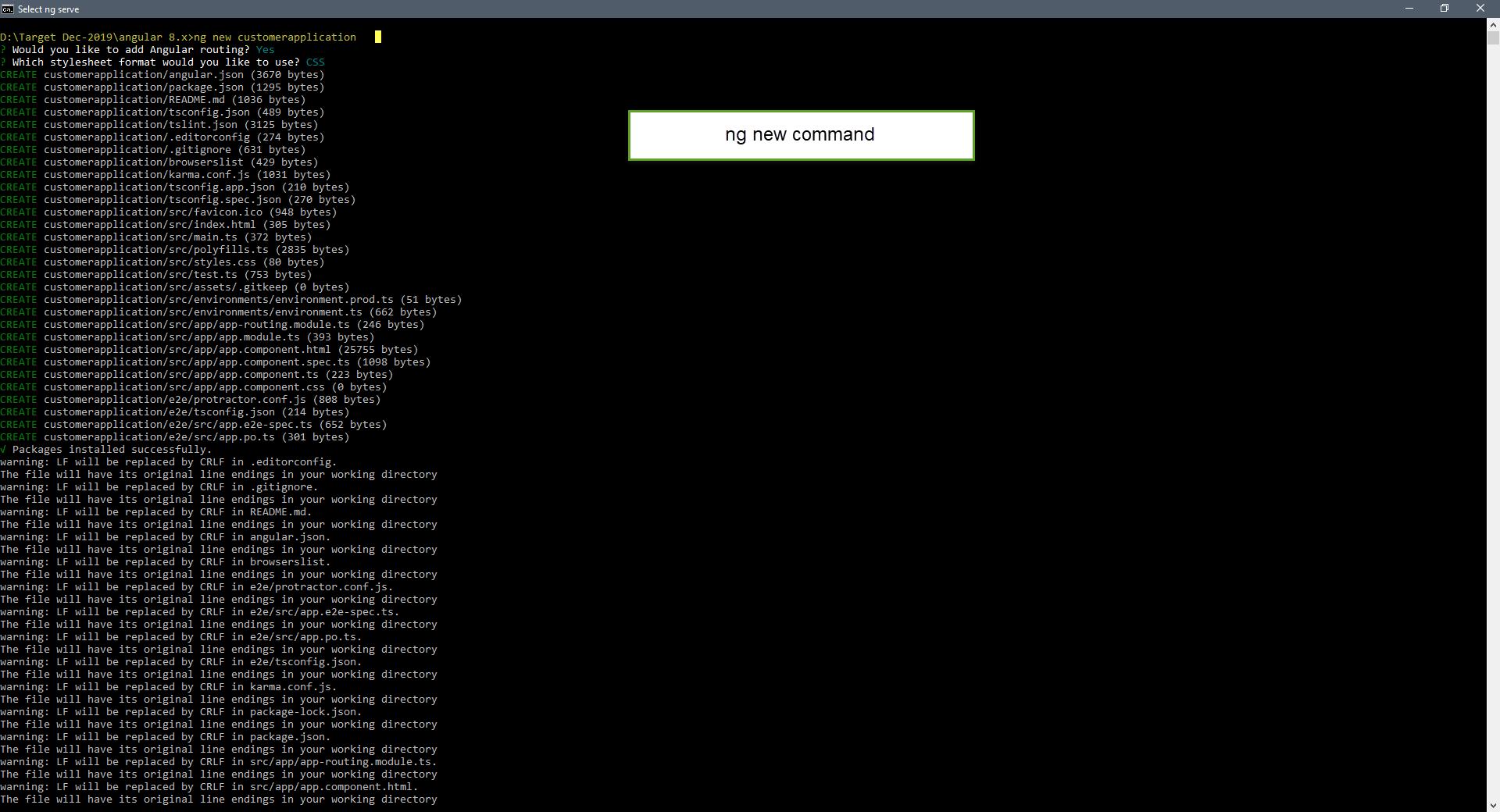 angular ng new command