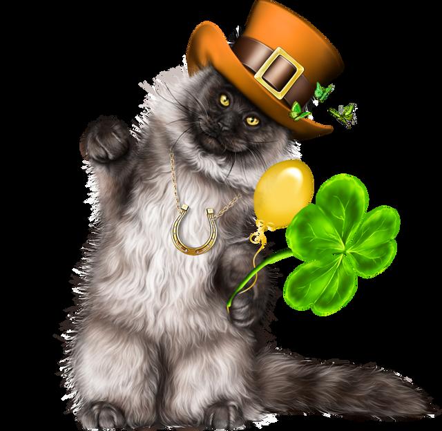 Leprechaun-Cat-With-Beer-40.png