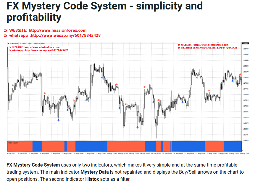 FX Mystery Code System - simplicity and profitability