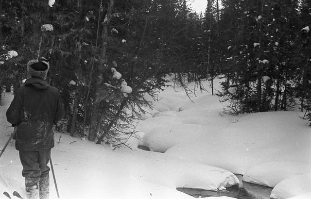 Dyatlov pass 1959 search 50