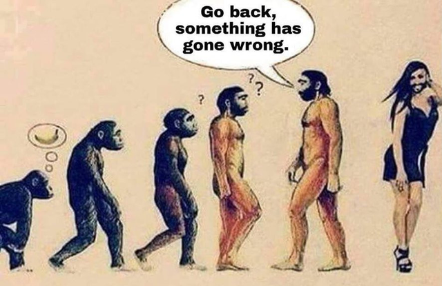 Go-Back-Something-Has-Gone-Wrong