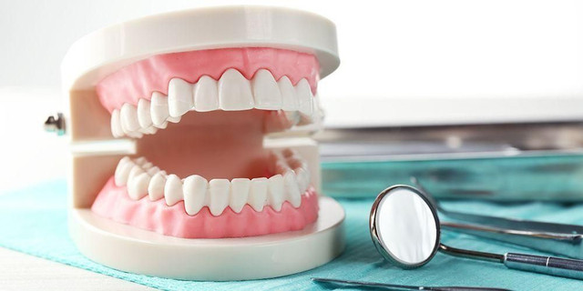 [Image: jumlah-gigi-orang-dewasa.jpg]