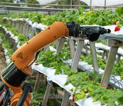 Automated farming / Автоматизированное сельское хозяйство!