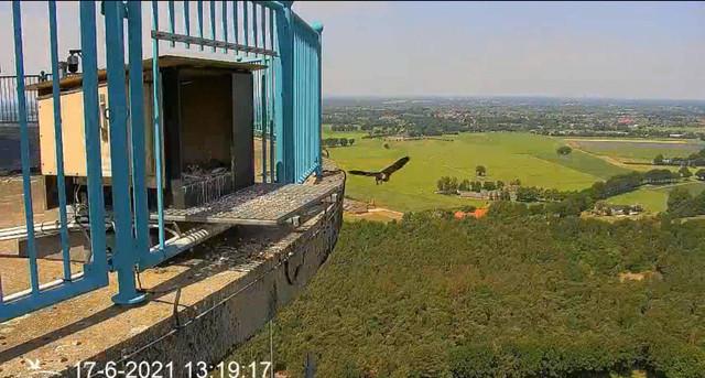 campics vanaf takkelingen © VWGGemert/VBN - Pagina 29 Video-2021-06-17-132057-Trim-3-Moment