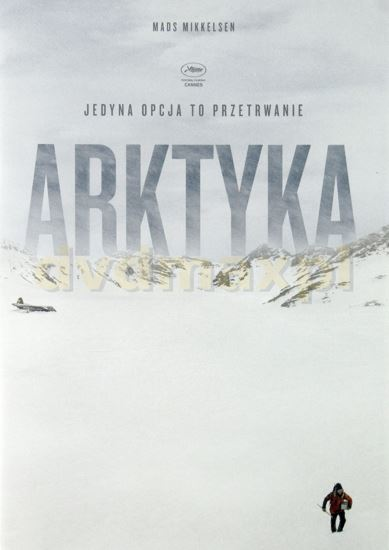 Arktyka / Arctic (2018) PL.AC3.DVDRip.XviD-GR4PE | Lektor PL