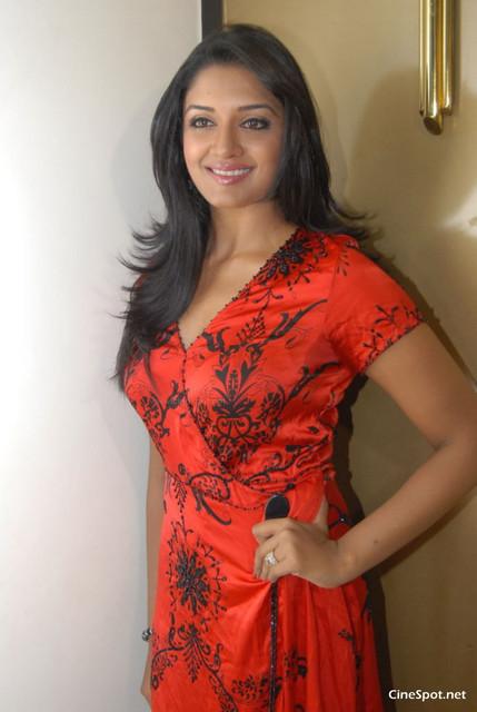 [Image: Vimala-Raman-South-Actress-Hot-Spicy-photos-6.jpg]