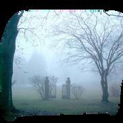 paysage-halloween-91.png