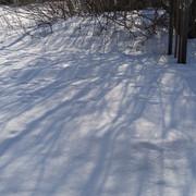 Snow-1200