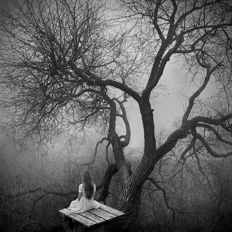 «Белая тишина». Фотограф Павел Терешковец 12