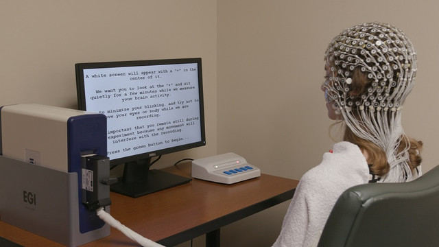 200211-Brain-scan.jpg