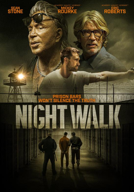 ღამის გასეირნება / NIGHT WALK