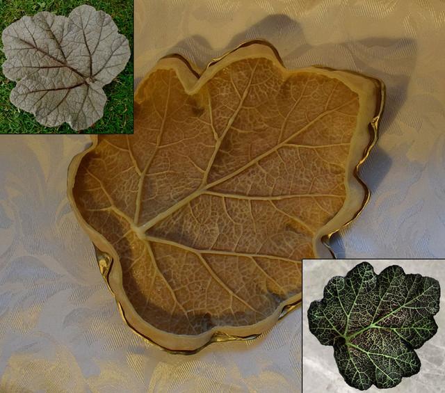 Leaf-Mold-Pics