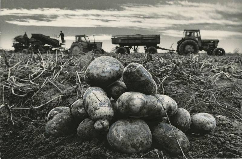 sovetskie poslevoennie fotografi abaza 1 5