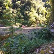 Valdibrasa-ponte