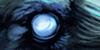 El Cuervo // Confirmación afiliación de élite 100x50
