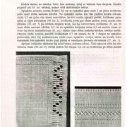 64-lpp