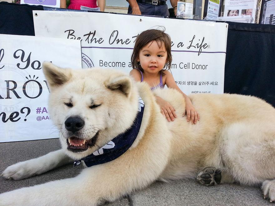 Когда собаки большие, а дети маленькие - 44 потрясающие фотографии - 37