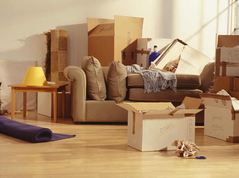 insured moving company