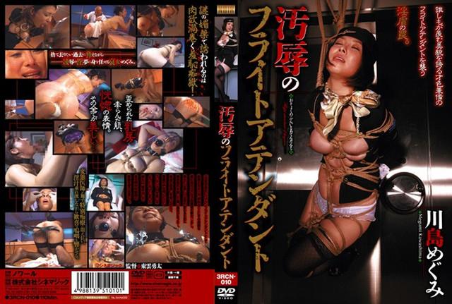 RCN-010 Flight attendant Kawashima Megumi of the disgrace