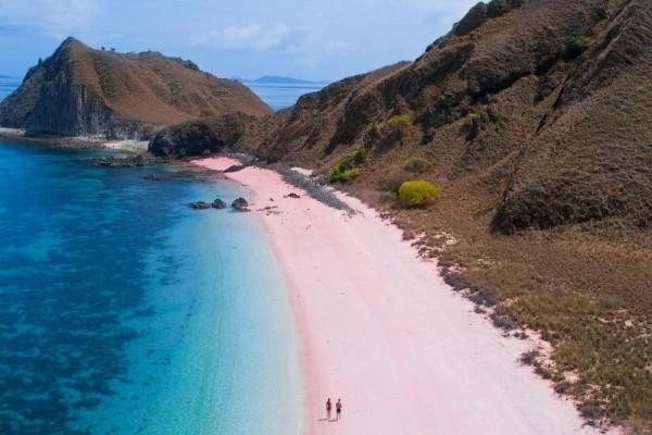 Bak Negeri Dongeng, 10 Potret Cantiknya Pantai Pink di Pulau Flores!