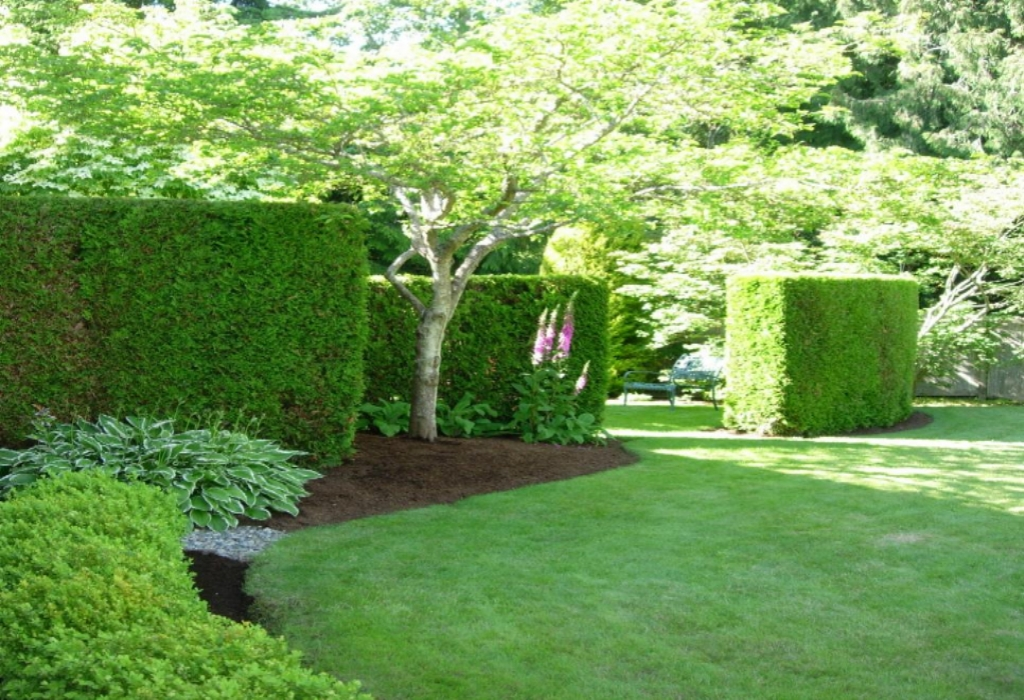 What is Really Happening With Home Garden Design