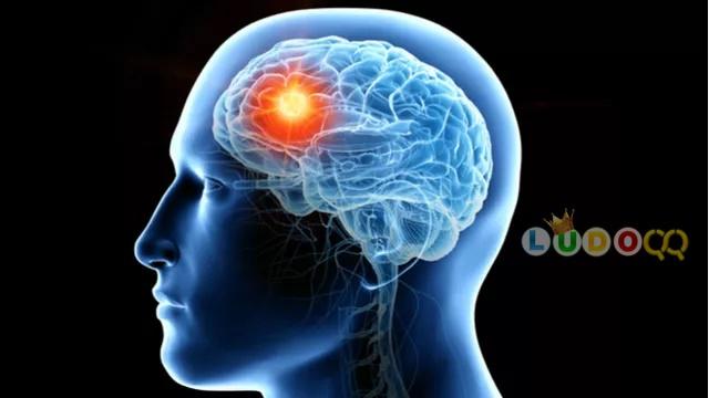 5 Kebiasaan Sehari-hari yang Dapat Meningkatkan Fungsi Otak