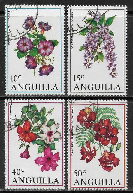 Blumen Anguilla 87