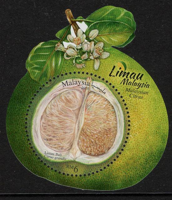 Malaysia-Citrus