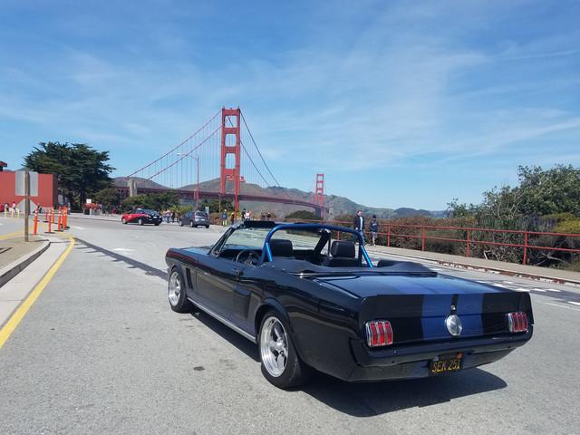Mustang 2.jpg