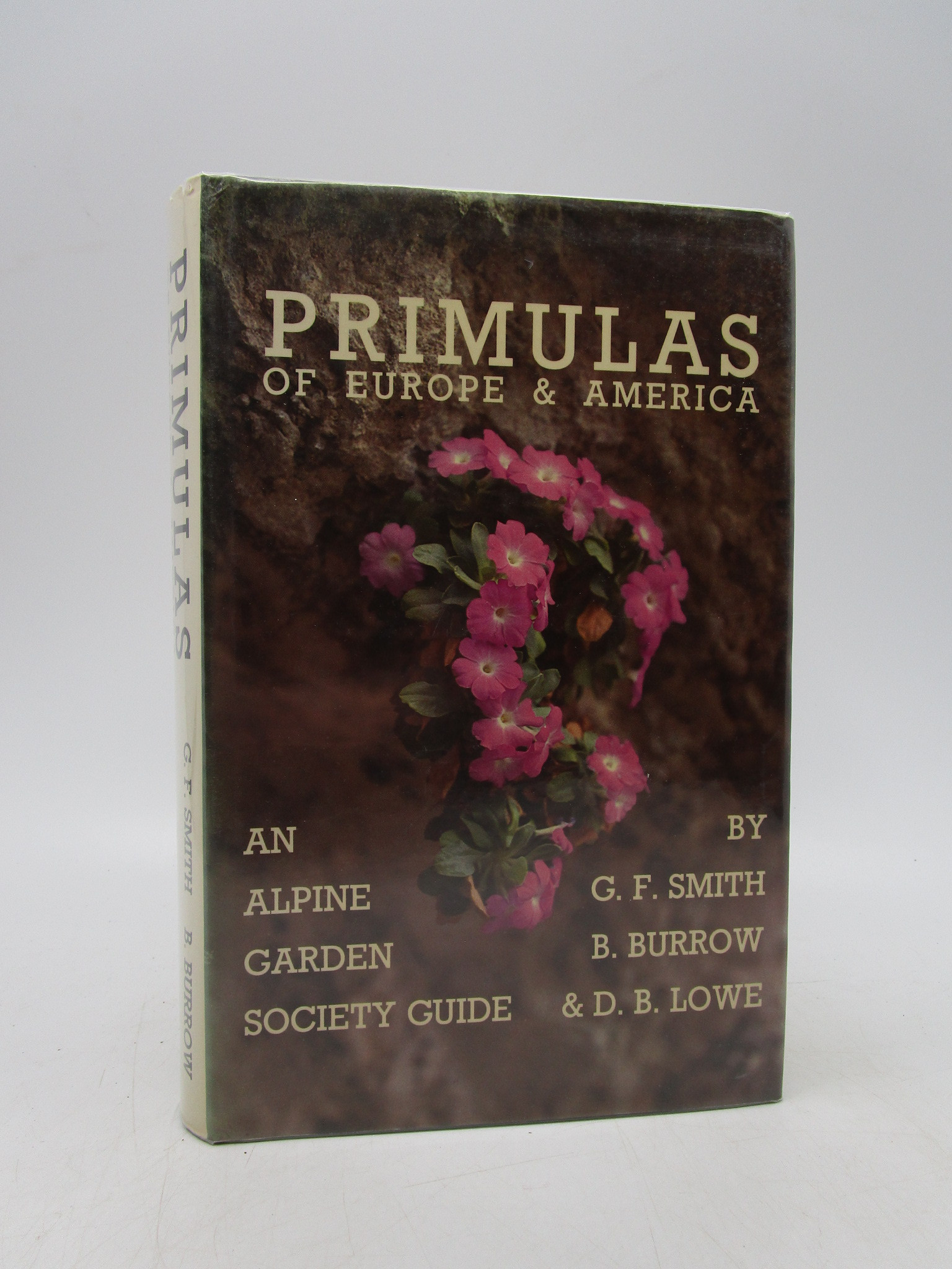 Image for Primulas of Europe and America