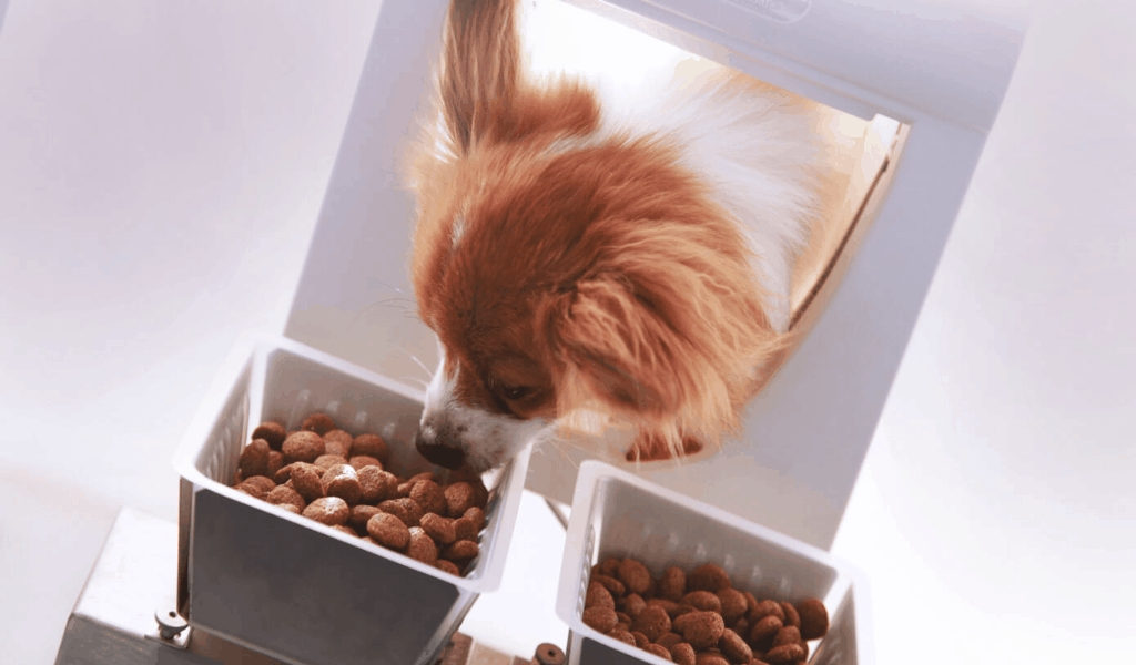 The  For Pet Food Revealed