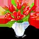 https://i.ibb.co/qpFGc87/bouquettulips.png