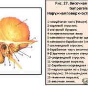 IMG-0271