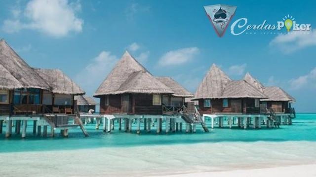 Resort di Maldives Ini Menawarkan Program Liburan Gratis